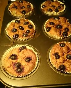 muffiny moje